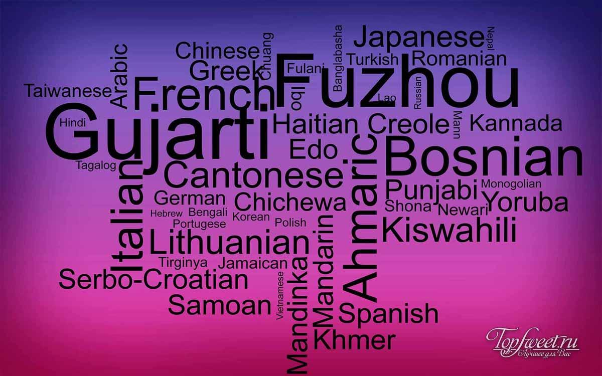 факты-о-языках