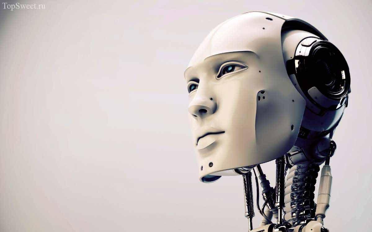 Роботы как агенты по недвижимости