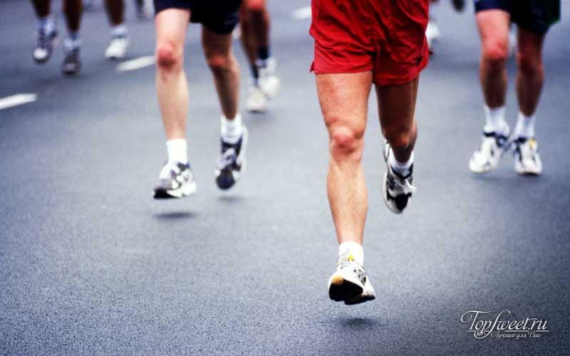 ТОП 20 лучших беговых кроссовок в 2015 году