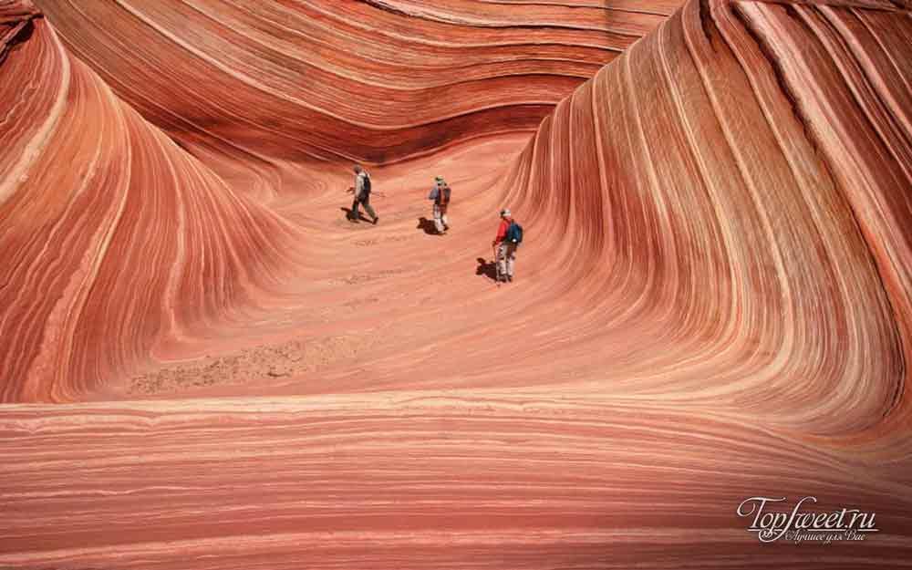 Волны-Аризоны