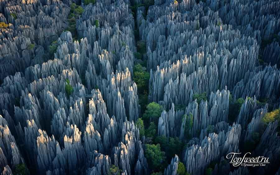 Каменный лес. Куньмин