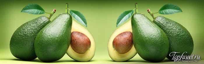 Авокадо. Источник белка