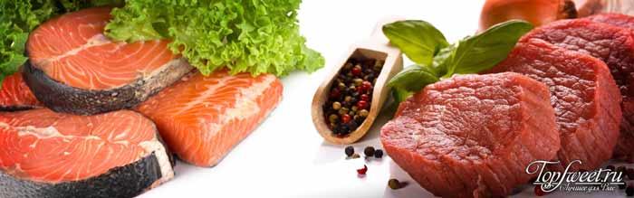 Рыба и мясо сжигают жир