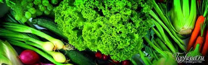 Зеленые овощи. Ценный белок