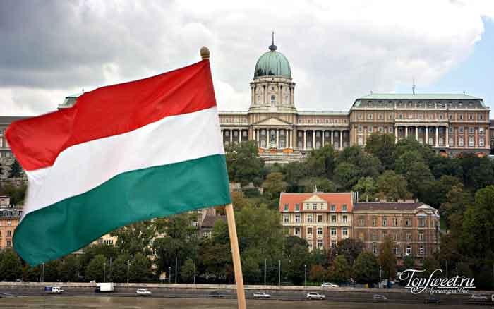 Венгры. Список самых трудных языков