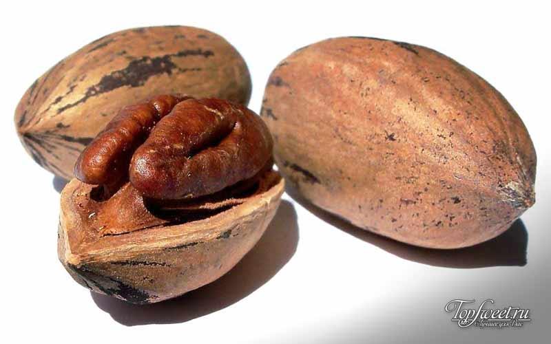 Пекан. Самые полезные орехи