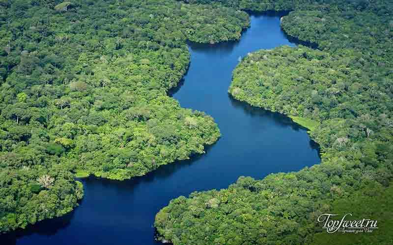 Пляжи Амазонки