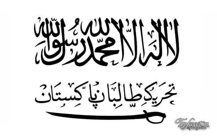 Техрик-е Талибан Пакистан. Список террористических организаций
