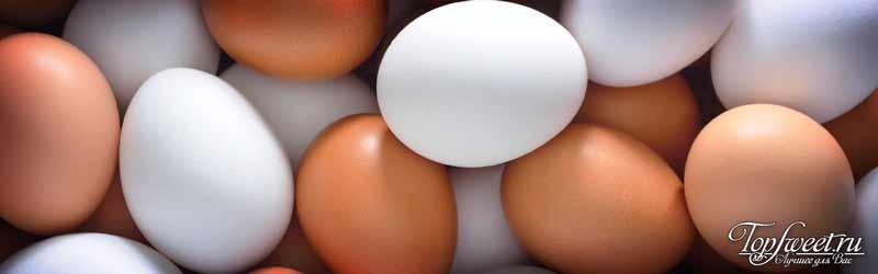 Яйца. ТОП-17 лучших продуктов для здоровых глаз
