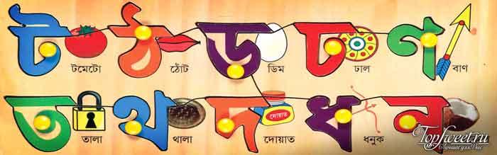 Бенгальский язык. ТОП-10 самые большие языки в мире
