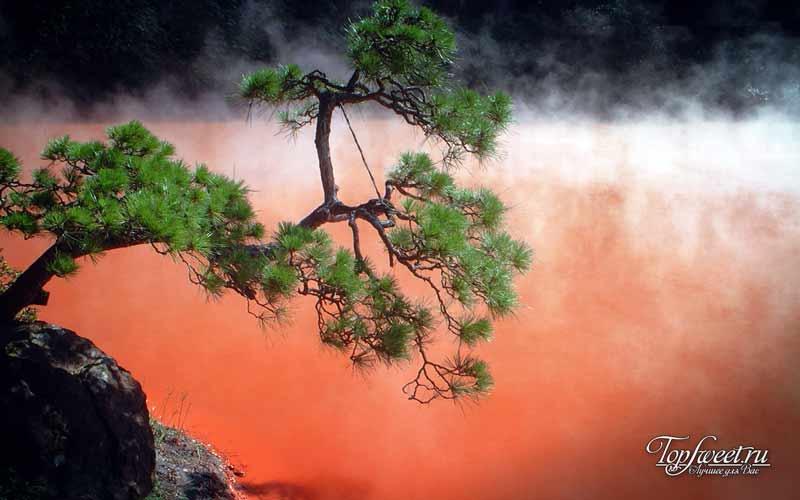 Горячий источник «Кровавый пруд»