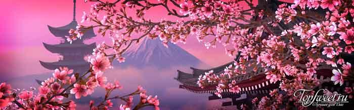 Японский язык. ТОП-10 самые распространенные языки в мире
