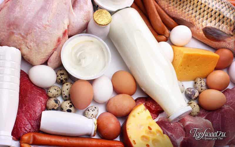 Белковая пища. Как воздержаться от лишних перекусов
