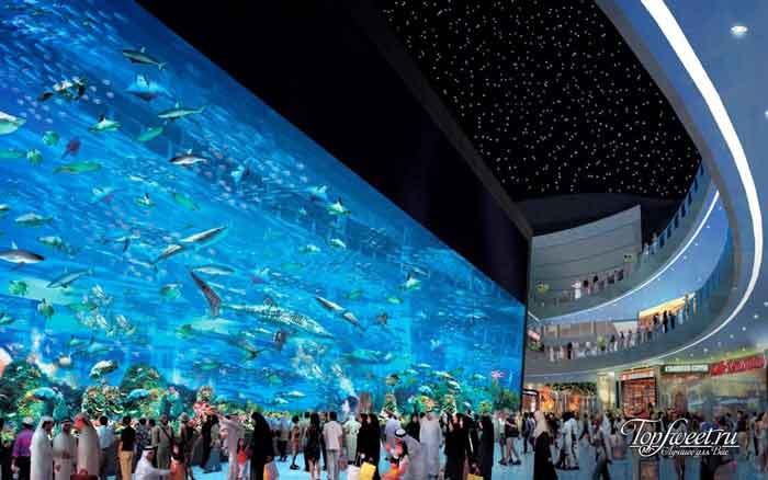 The Okinawa Churaumi Aquarium. Самые большие и необычные аквариумы в мире