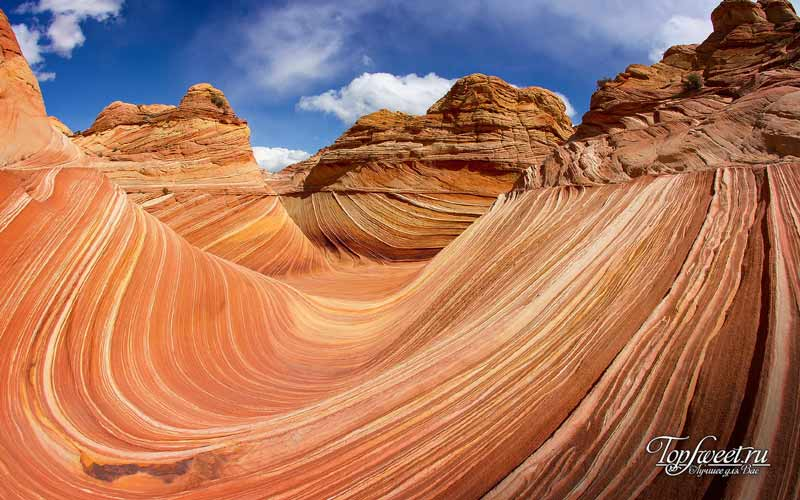 Волновые скалы