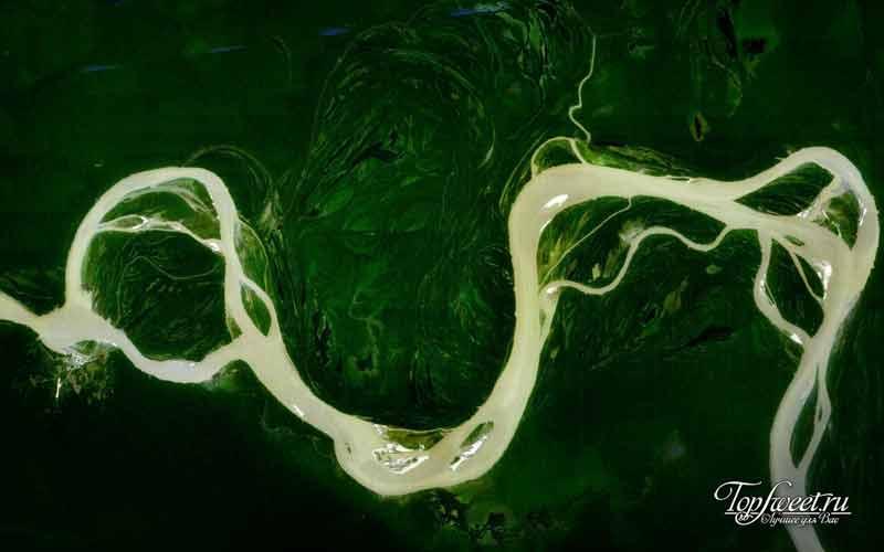 Река Амазонка из космоса