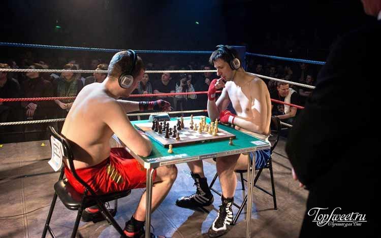 Шахбокс. Самые необычные виды спорта