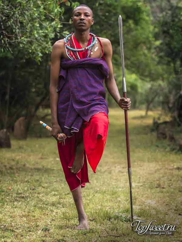 Масаи Моран. ТОП-10 самых шокирующих ритуалов Африки