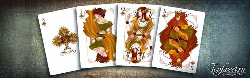 Жизнь покерной колоды