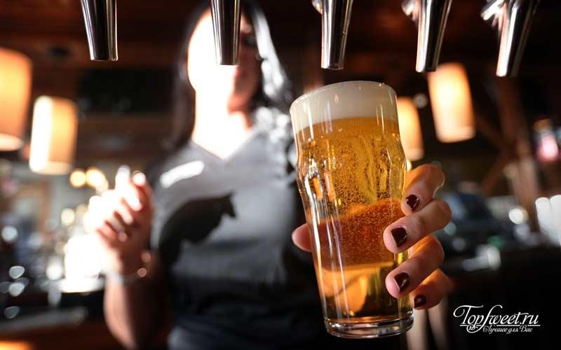 beer day. ТОП-10 малоизвестных фактов об алкоголе