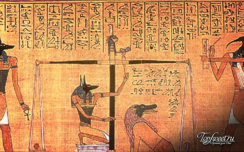 Обезьяны в Др.Египте