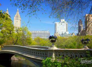 ТОП-10 Лучшие городские парки мира