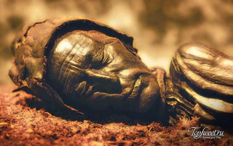 Человек из Толлунда. Познавательные археологические открытия